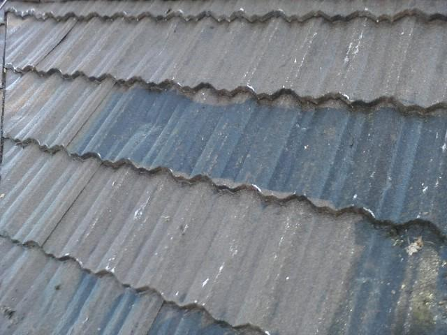 roof-after-cleaning-1