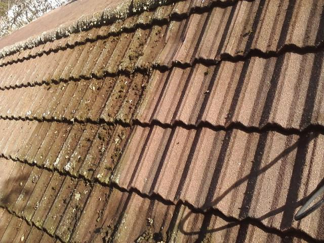 roof-before-cleaning-2