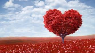 Tree Heart Funeral Home And Cremations Lincoln CA