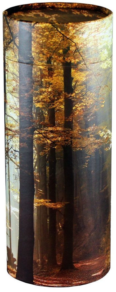 Scattering Tube Autumn Woods preview 1