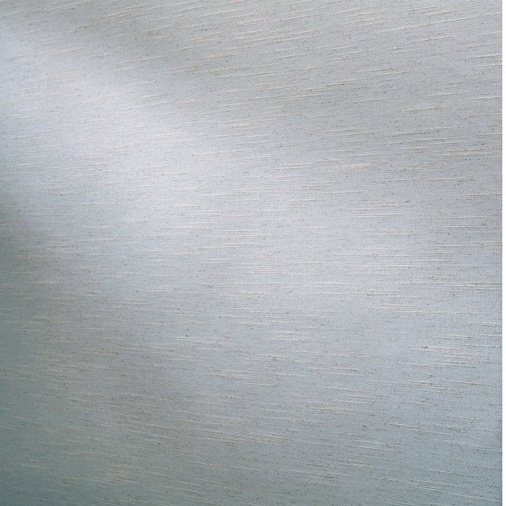 Designer Roller Shades Fabric: Tao   Color: Iron